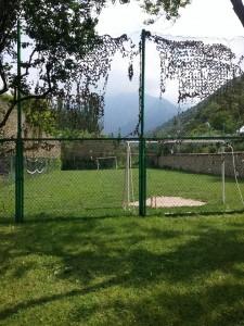 соколиный питомник сункар футбол